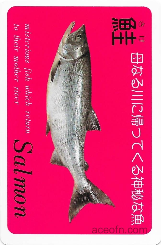 Salmon - retro